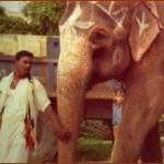 Ценность первых кинофильмов режиссеров-реалистов в Индии
