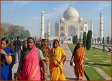 india15535