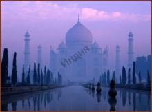 Современная индийская литература